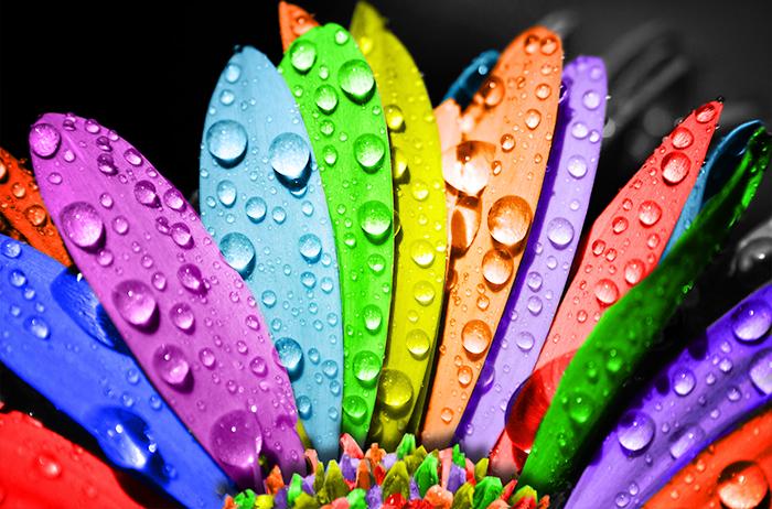 colori e il marketing
