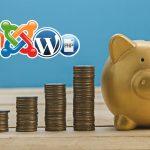 Hai poco Budget: Quanto Spendere per la Piattaforma Ecommerce?